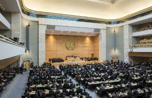 Assemblea Generale OMS (Foto: WHO)