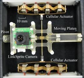 Schema del dispositivo