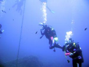 Immersione con bombole (foto: Gingio, Fonte: Flickr)