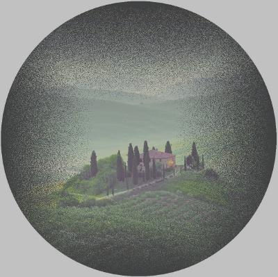 Simulazione della visione di malato con retinite pigmentosa (Copyright Agenzia internazionale per la prevenzione della cecità-IAPB Italia onlus)