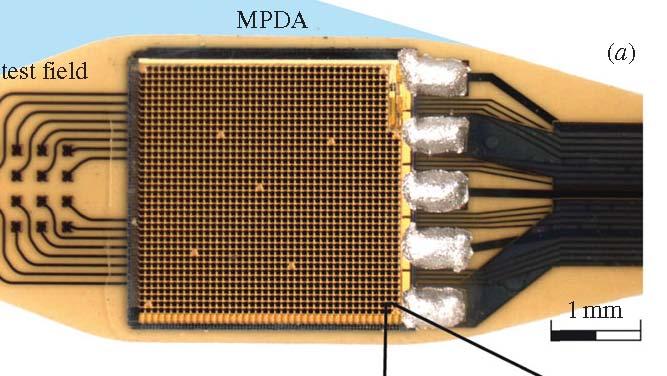 Chip-sensore collocato sotto la retina (Fonte: Proceedings of the Royal Society)