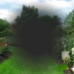 amd-avanzata-simulazione_visione-scotoma.png