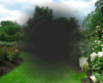 amd-avanzata-simulazione_visione-scotoma-photospip603b3f1091a4f8d68d4084b7ad65c917.png
