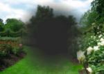 amd-avanzata-simulazione_visione-scotoma-photospipd02c442b4735b046ba2cdd901535c9e3.png