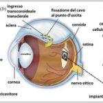 occhio_bionico_tubinga-web.jpg
